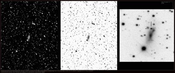 La supernoave SN 2013dy dans la galaxie NGC 7250 (image LOSS)