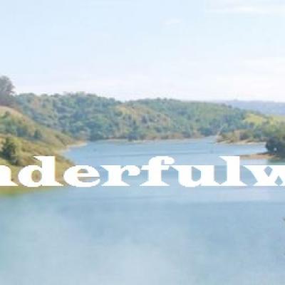 Bannière officielle whatawonderfulworldblog