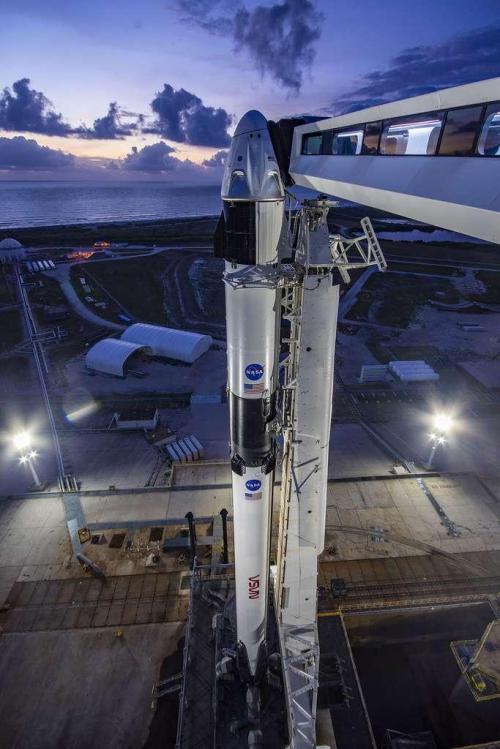 La capsule Crew Dragon sur son pas de tir (image Space X)