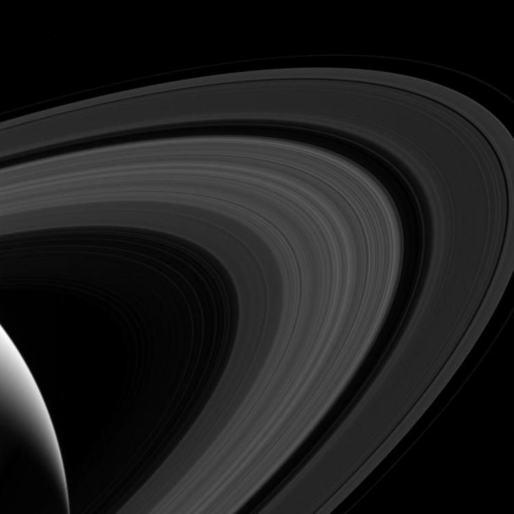 Les anneaux de Saturne, photographiés le 24 Juillet (image NASA)