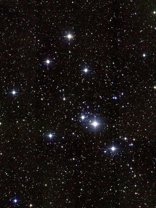 Messier 41 (image Google)