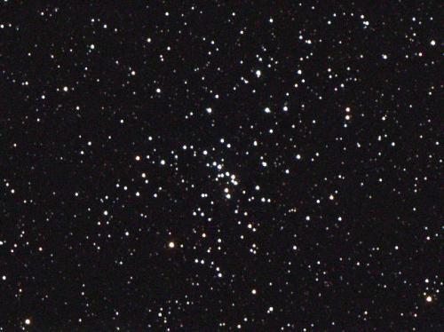 Messier 48 (image Ole Nielsen)