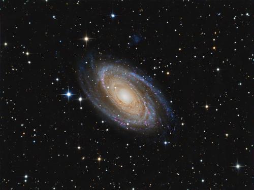 Messier 81 (image Inneberg-astro)