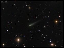 La comète Ison, le 24 Septembre 2013 (image Damien Peach)